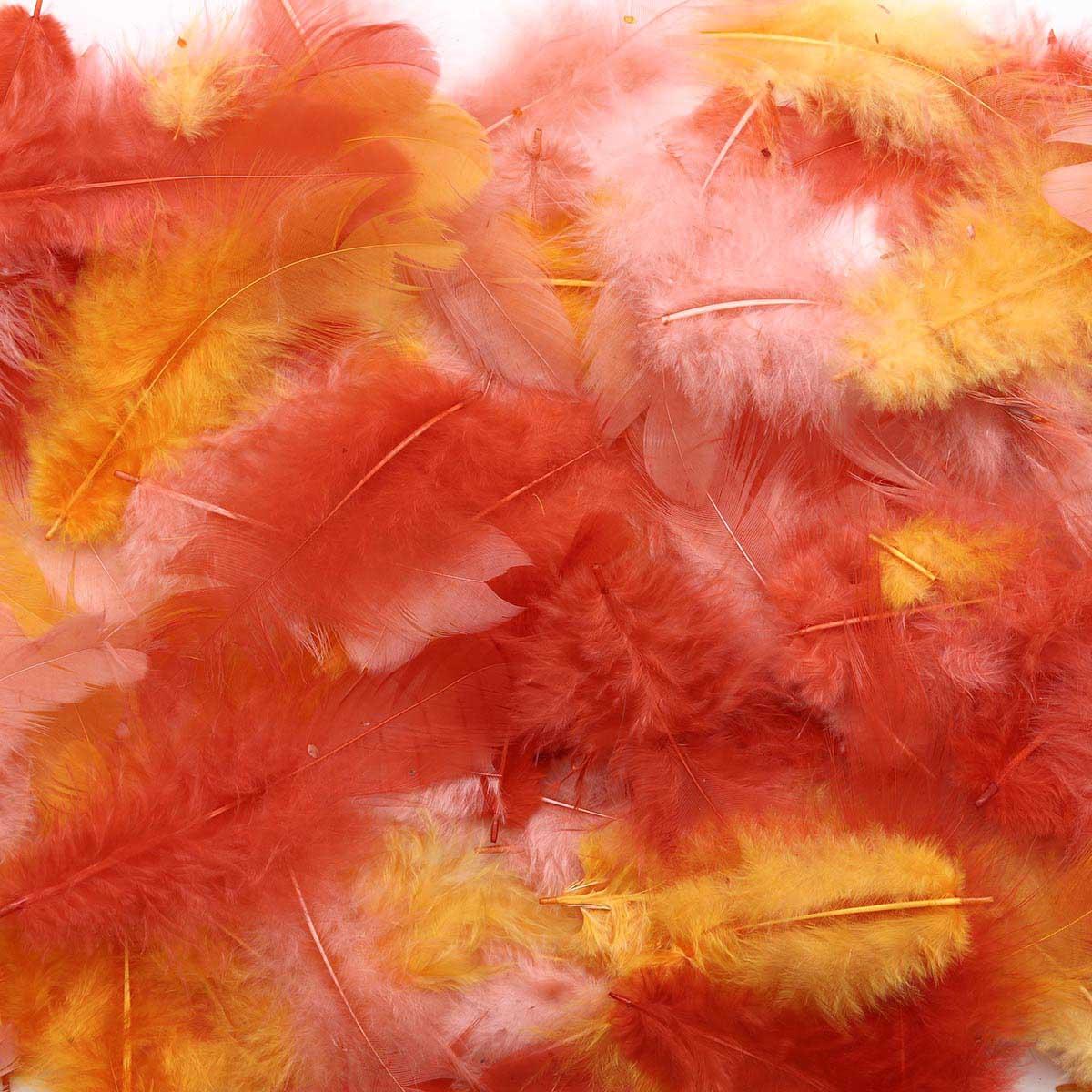 63821021 Декоративные перья красное ассорти 10г Glorex