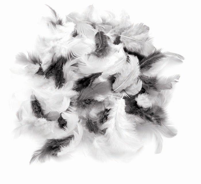 63821027 Декоративные перья белый-черный-серый 10g Glorex