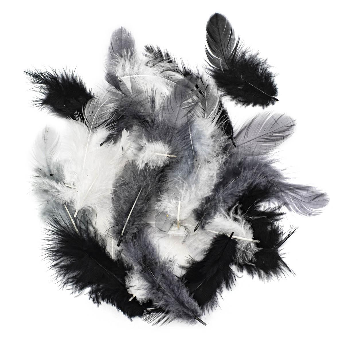63821127 Декоративные перья белый-черный-серый 2г, (30шт.+,-) Glorex