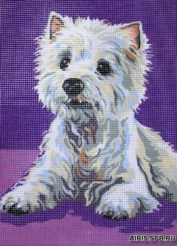 9880.0141.0056 Канва с рисунком Royal Paris 'Белый щенок' 30*40 см