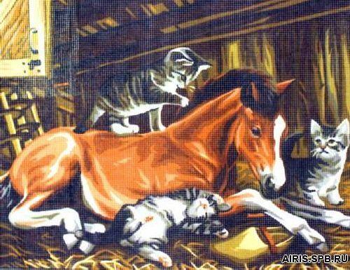 9880.0132.0163 Канва с рисунком Royal Paris 'Жеребенок' 45*60 см