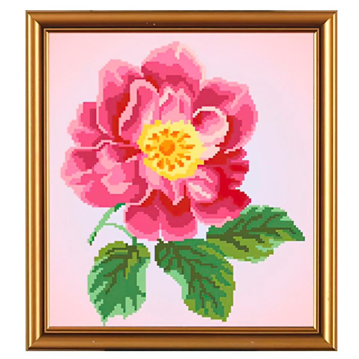 Бис3030 Рисунок на канве для вышивки бисером 'Цветок шиповника' фото