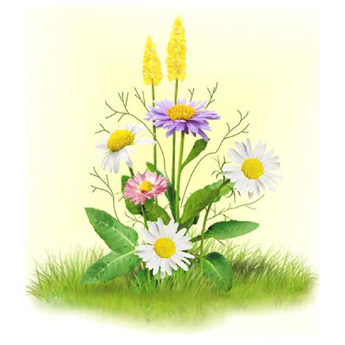 7025 Набор для вышивания лентами 'Матренин Посад' 'Ромашки с цветочками', 16*18 см
