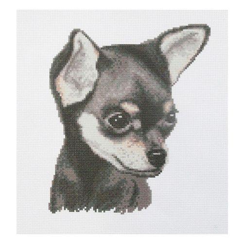"""Набор рисунок на канве + мулине ПК-208 """"Чихуахуа"""", 33х33 см, Hobby&Pro"""