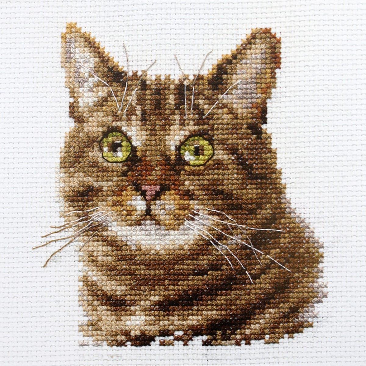 0-135 Набор для вышивания АЛИСА 'Европейский кот' 12*11см