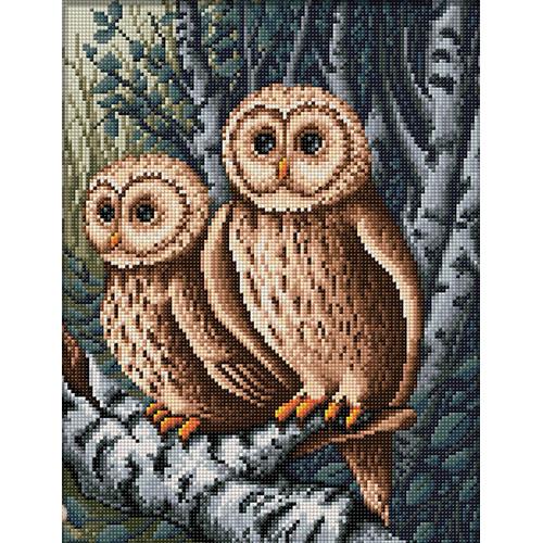 АЖ-1644 Картина стразами 'Совы на охоте' 30*40см
