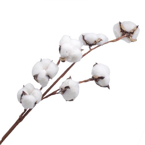 68529 ИЦ Хлопок белый LXY003-1
