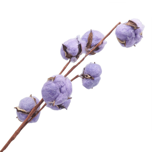 68530 ИЦ Хлопок фиолетовый LXY003-2-1