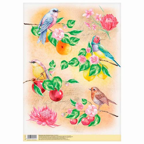 3742411 Декупажная карта «Райские птицы», 21*29,7 см