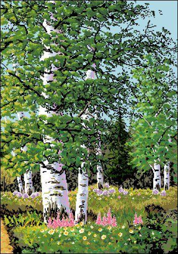 П-047 Канва с рисунком 'Гелиос' 'Берёзовая роща', 41,5х56 см