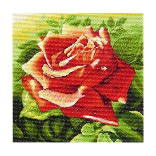 1216 Канва с рисунком 'Матренин посад' 'Красная роза', 41*41 см