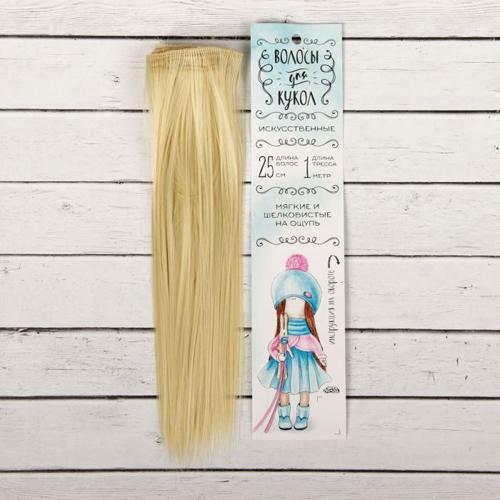 2294913 Трессы для кукол 'Прямые' длина волос 25 см, ширина 100 см, цвет № 613