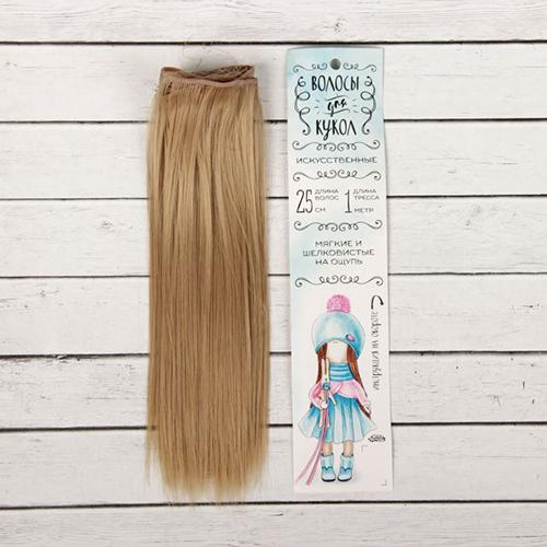 2294904 Волосы - тресс для кукол 'Прямые' длина волос 25 см, ширина 100 см, цвет № 16