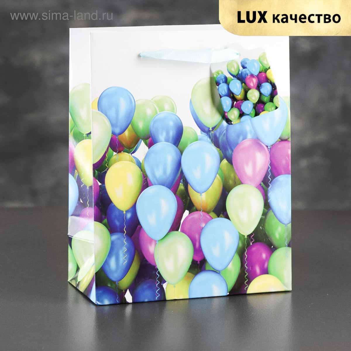 2871273 Пакет ламинированный 'Разноцветные шарики', люкс 23*18*9 см