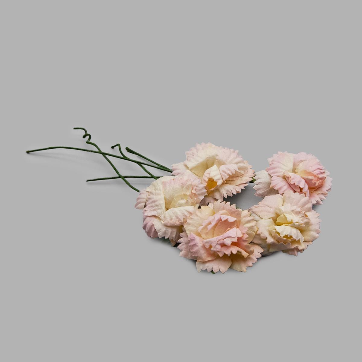 Гвоздики, набор 5 шт, диам 2,5 см, желто-розовые SCB291501