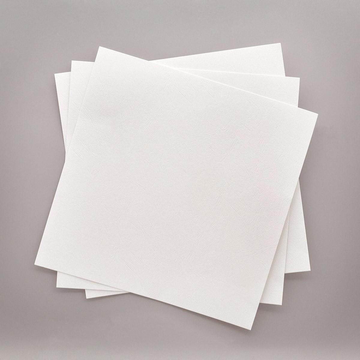 БФ004-1 Бумага с фактурой 'Кожа', белый, упак./3 листа
