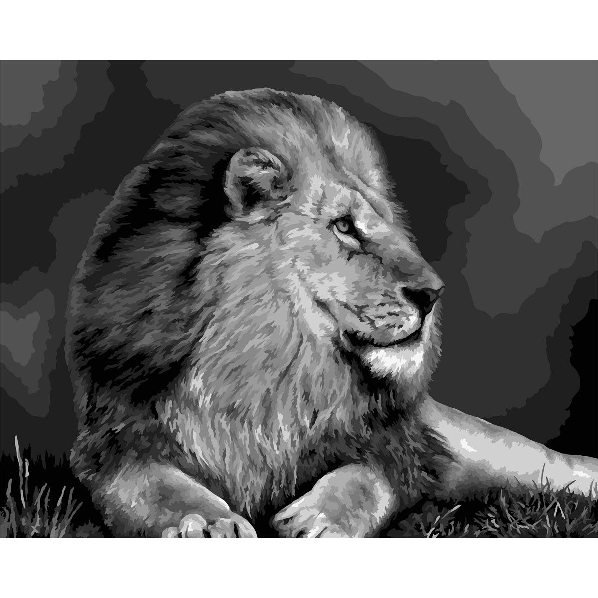 F009 Набор для рисования по номерам 'Царь зверей' 40*50см