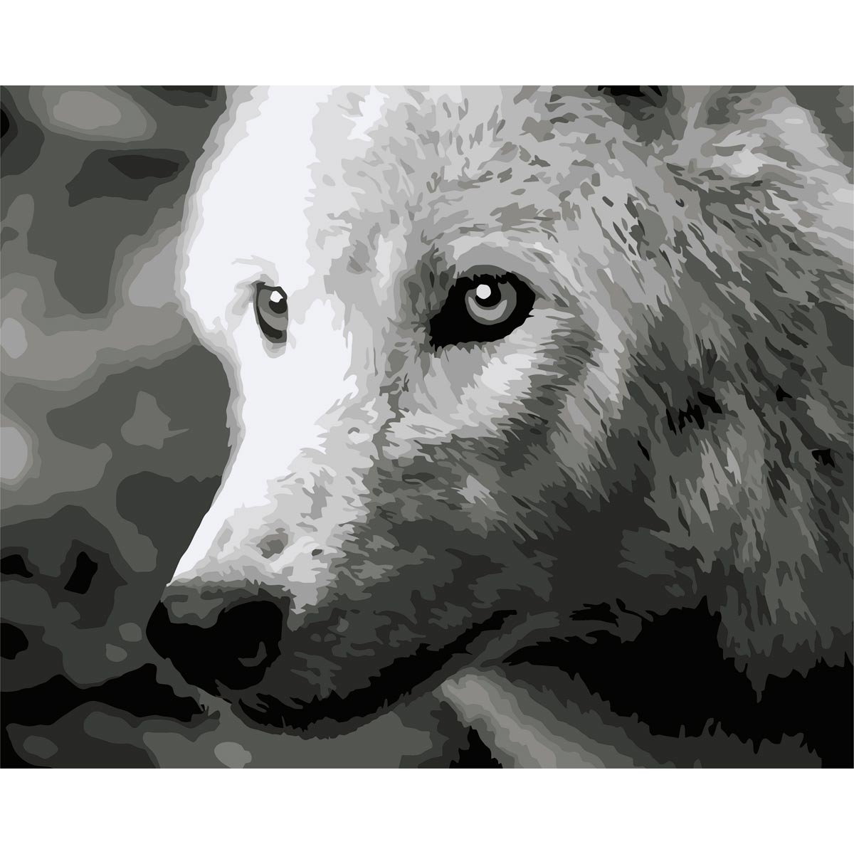 F011 Набор для рисования по номерам 'Белый волк' 40*50см