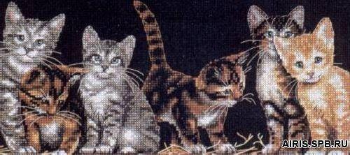 35133-DMS Набор для вышивания Dimensions 'Котята на заднем дворе', 41х18 см