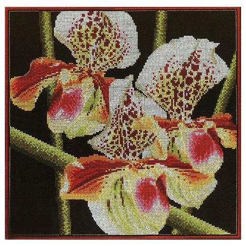 М263 Набор для вышивания RTO 'Орхидеи Пафиопедилум', 36x36 см