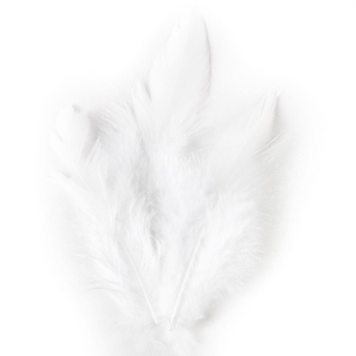 63821001 Перо декоративное,белый,15шт. Glorex