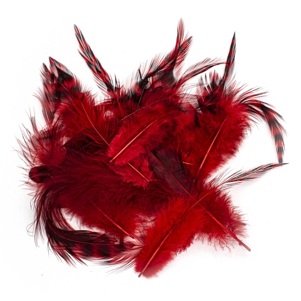 63821004 Перо декоративное,красный,15шт. Glorex