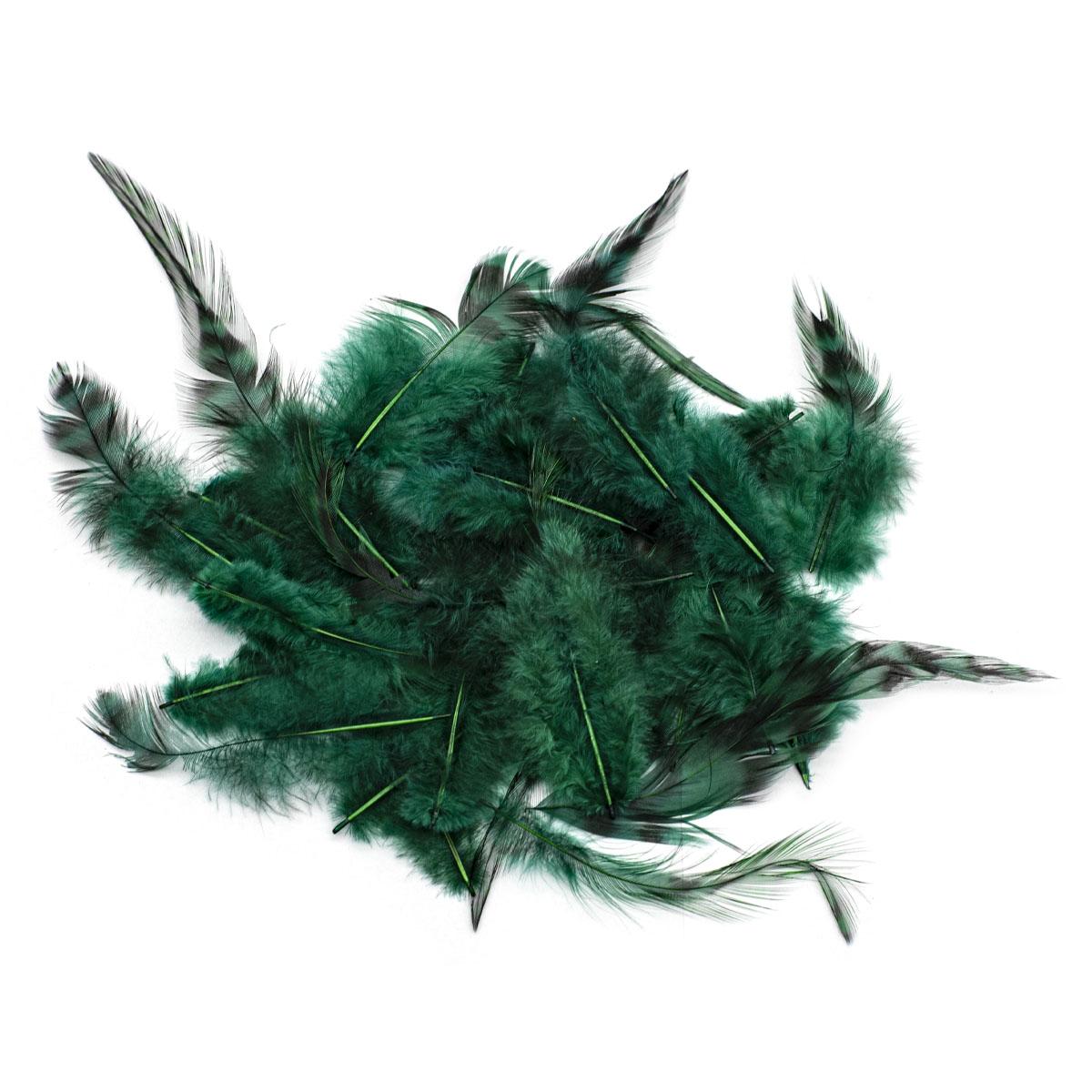 63821007 Перо декоративное,т.зеленый,15шт. Glorex