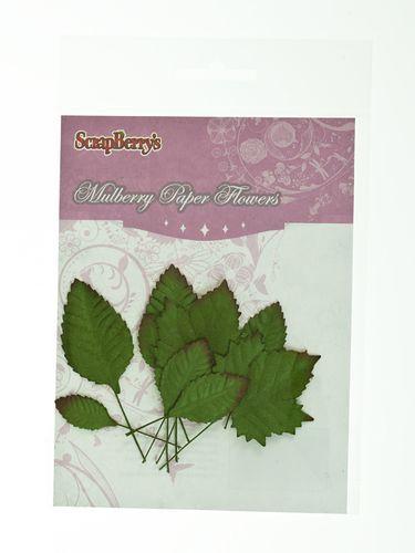 SCB300608 Набор листьев из шелковичной бумаги, 'Микс'