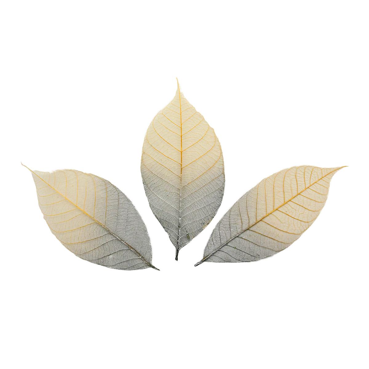SCB300507 Скелетированные листочки из каучукового дерева, 2-цветный серебряный, упак./8 шт., ScrapBerry's
