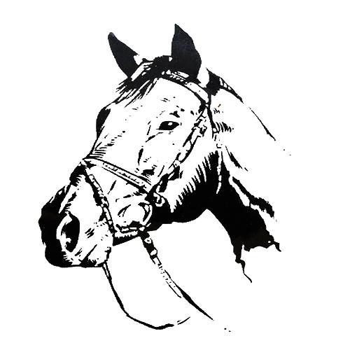 П0000031 Набор д/детского творчества «Лошадь 6» А4