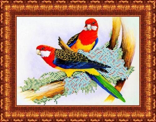 КБЖ-4005 Канва с рисунком для бисера 'Попугаи', А4
