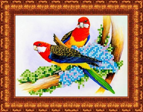 КБЖ-5003 Канва с рисунком для бисера 'Попугаи', А5