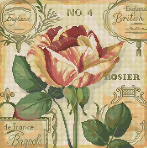 0107 Набор для вышивания Nitex 'Английская роза', 25х25 см