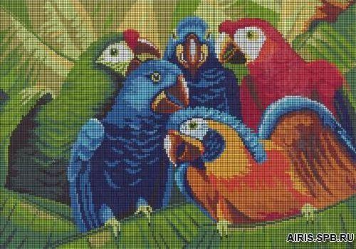 3000 Попугай 37х27 см