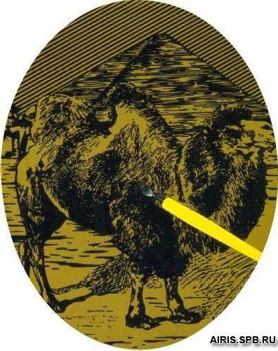 8501J Гравюра 'Верблюд', 14*19 см