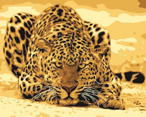 G253 Набор для раскрашивания по номерам 'Леопард', 40х50см