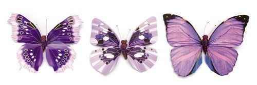 67101011 Бабочки, ассорти, упак./1 шт., Glorex
