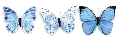 67101013 Бабочки, ассорти, упак./1 шт., Glorex