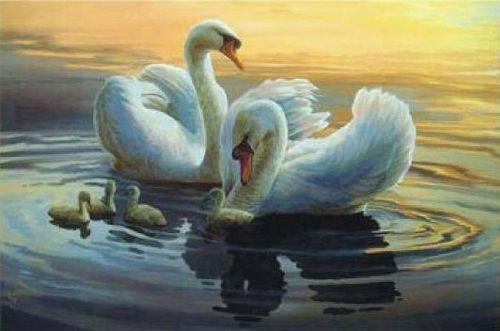 1094 Мозаика Cristal 'Лебединая семья', 65*43 см
