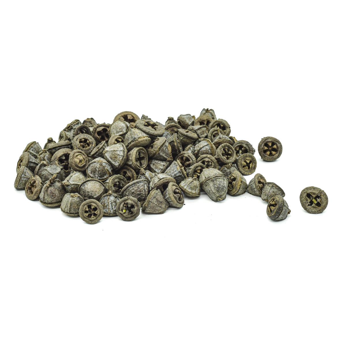 YW226 Декоративные элементы натуральные. Коробочки эвкалипта, 1,5-2см, 200гр