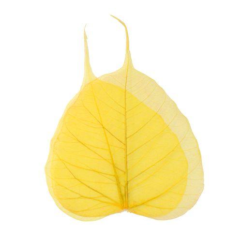 63803952 Скелетированные листочки, желтый, 60 г, упак./10 шт., Glorex