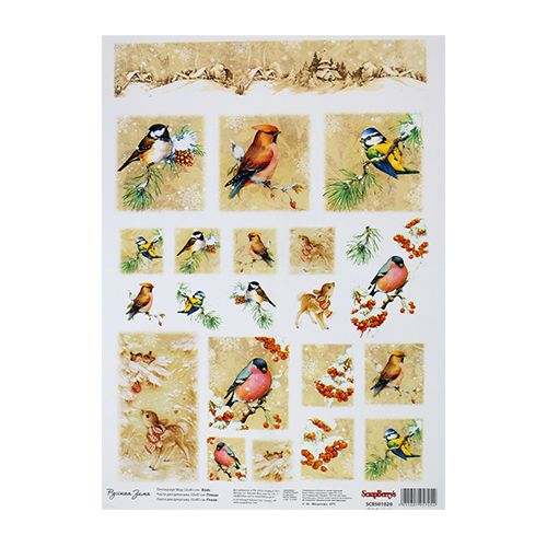 SCB501020 Карта для декупажа 'Птицы', 32*45 см, Scrapberry's