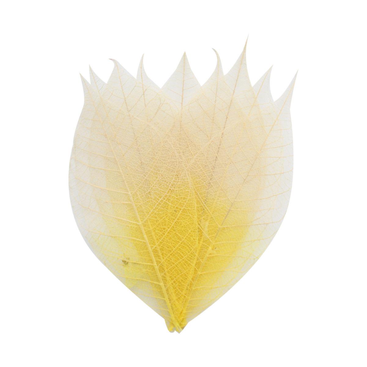 SCB300513 Скелетированные листочки из бананового дерева, бело-желтый, упак./8 шт., ScrapBerry's