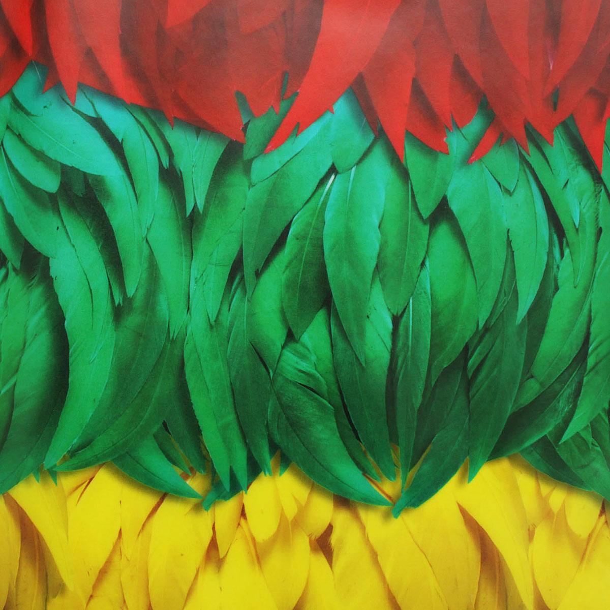 84105 Транспарентная бумага 'Перья', 115 г/м², 50,5*70 см, Folia