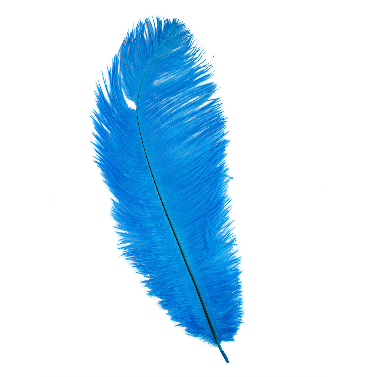 HT108A72 Перо страуса 25-30см, Астра (1шт/упак)