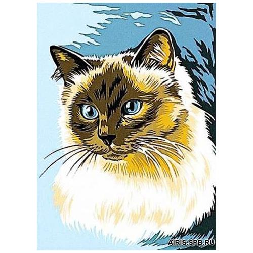 MRC722-199 Канва с рисунком MARGOT 'Сиамский кот' 30*40 см