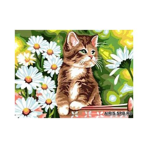 MRC1531-404 Канва с рисунком MARGOT 'Кот в ромашках' 40*50 см