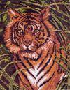 0099-1 Канва с рисунком Матренин посад 'Тигр' 19*24см.(28*37см)