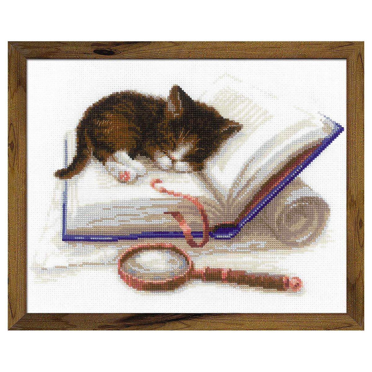 1725 Набор для вышивания Риолис 'Котёнок на книжке' 30*24см