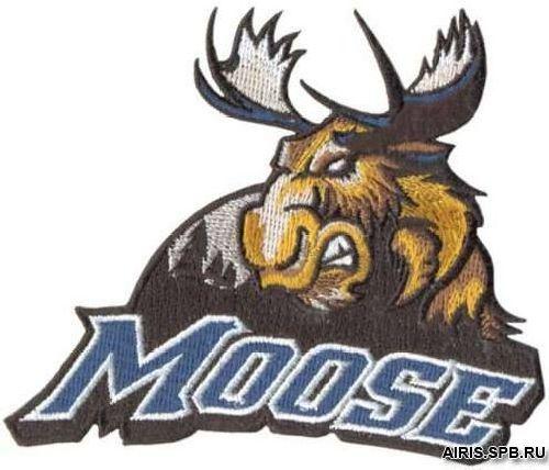 AD1257 Термоаппликация Moose (лось), 8*10 см, Hobby&Pro